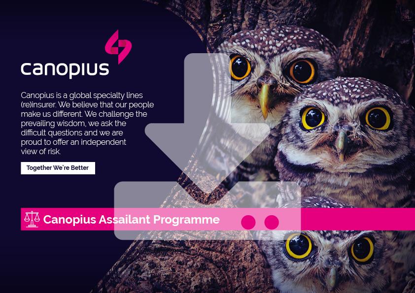 Canopius-Factsheet-Assailant-Programme