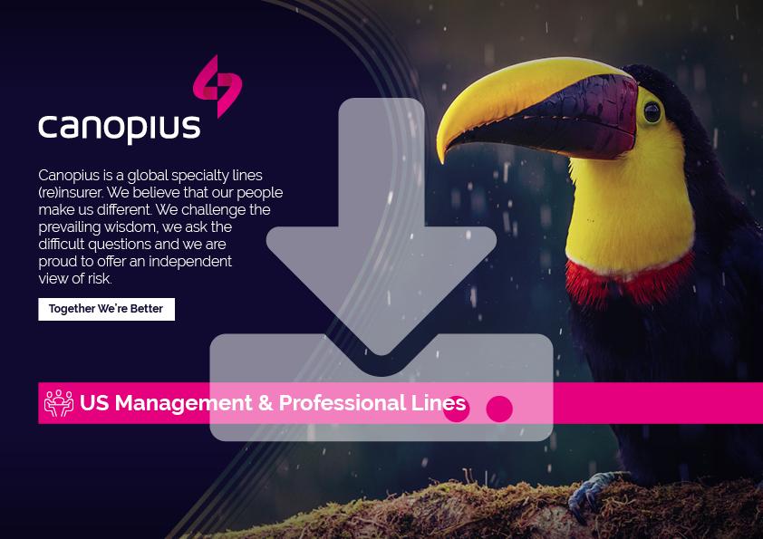 Canopius-Factsheet-US-Management-Professional-Lines-2021