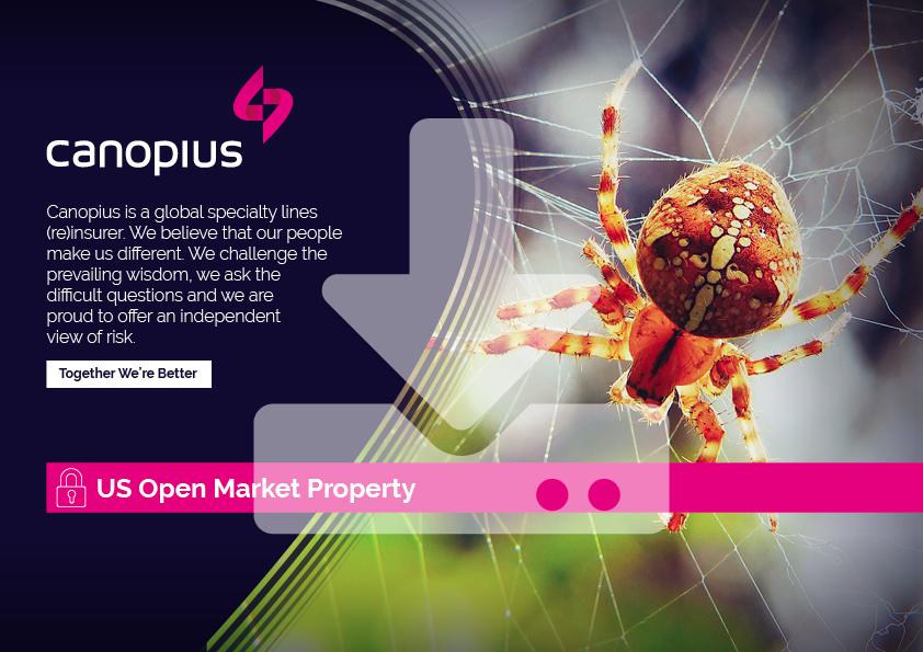 Canopius-Factsheet-US-Open-Market-Property-2021