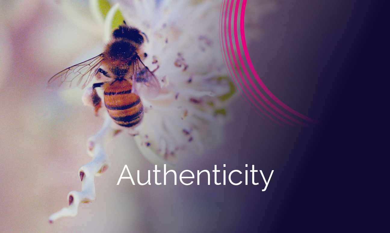 Who-We-Are-Values-Grid-Authenticity