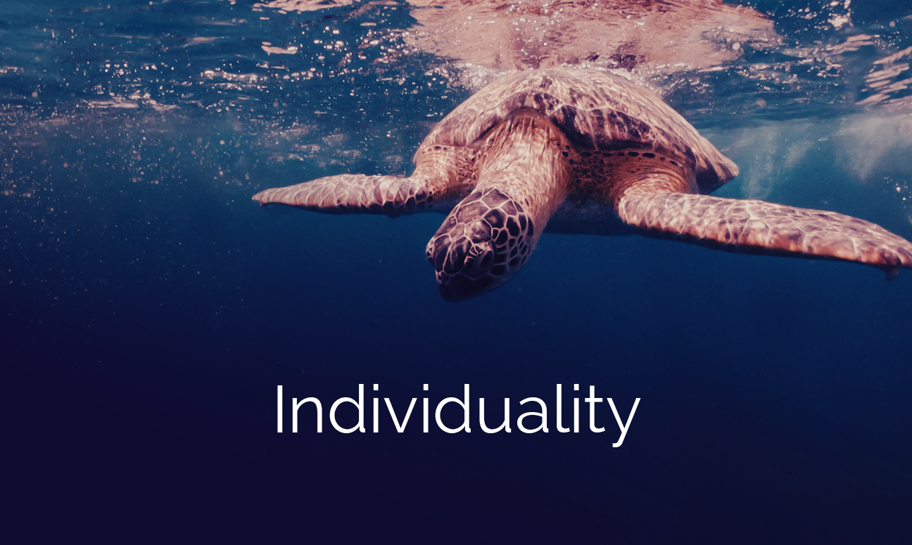 Who-We-Are-Values-Grid-Individuality