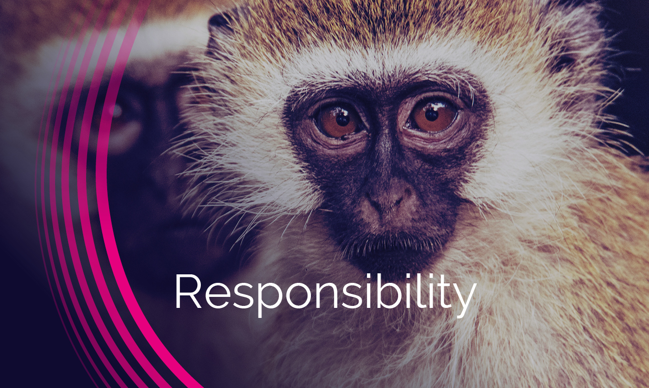 Who-We-Are-Values-Grid-Responsibility